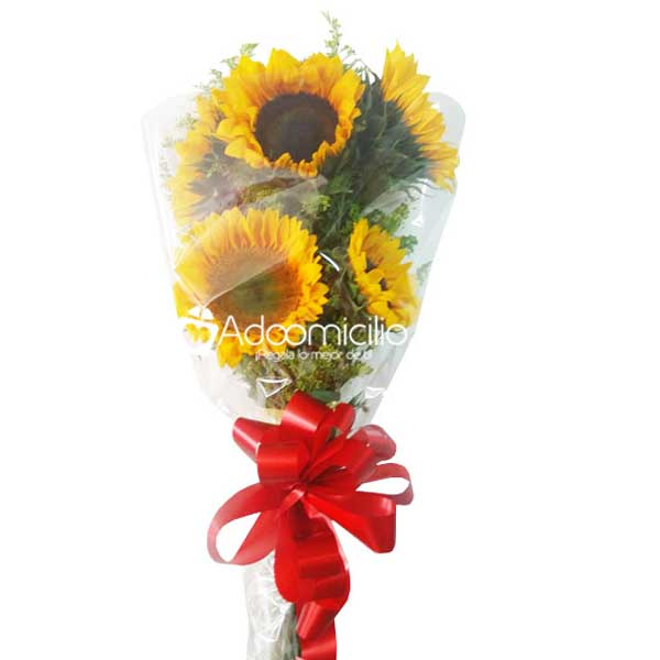 Bouquet de Girasoles x 5
